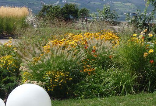 progettazione giardini a bassa manutenzione e risparmio di acqua. www.luther.it Merano Bolzano Alto Adige