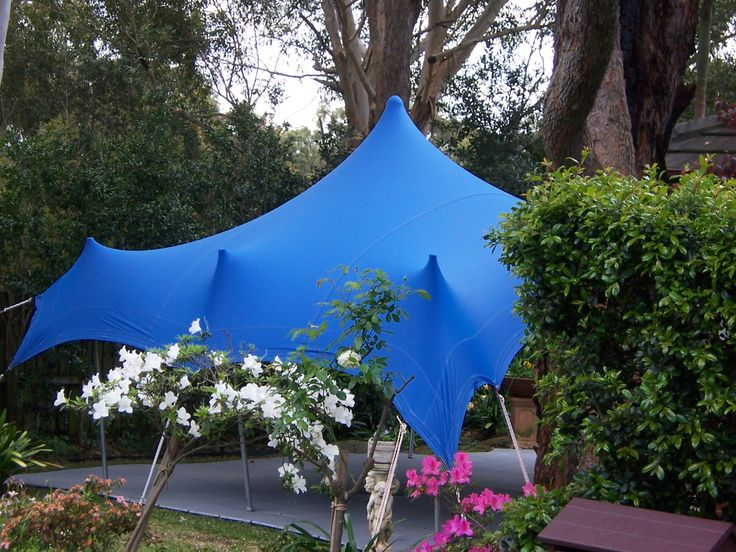 Blue Bedouin Freeform Marquee for a Birthday Party