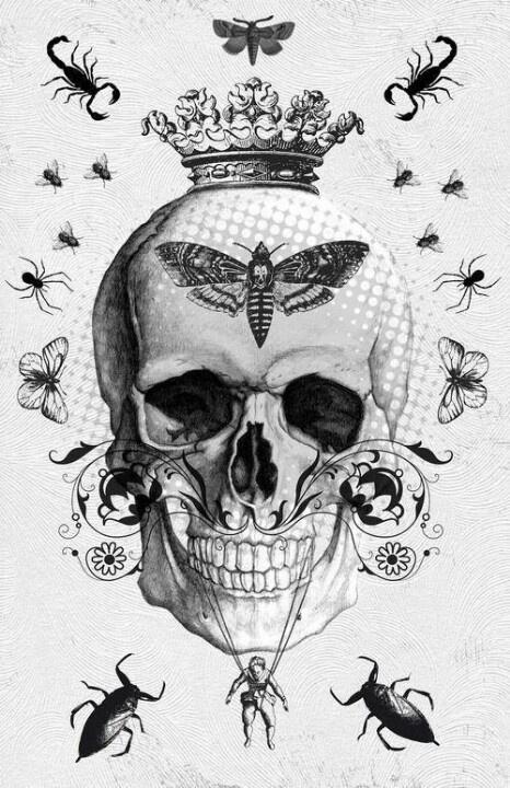 Skull & Bugs