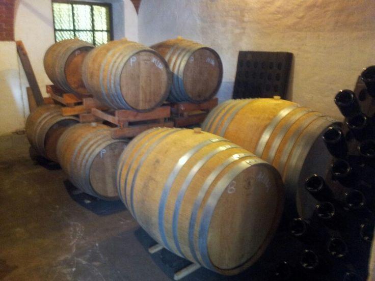 Le cantine della provincia do #Torino. Presente passato e futuro dei grandi #vini #piemontesi. #Turin #wine