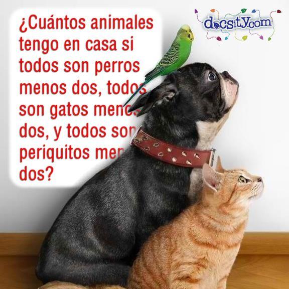 #acertijo ¿Cuántos #animales tengo en casa si todos son #perros menos dos, todos son #gatos menos dos, y todos son periquitos menos dos? #docsity #riddle