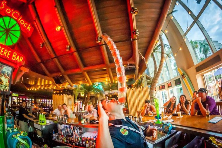 Best party bars in Las Vegas: Margaritaville. This isn't just a bar, it's an epic group of bars that ensure you'll never want for another margarita as long as you are still in Margaritaville. The Margaritaville Casino is located inside/beside the Flamingo and houses the 5 O'Clock Somewhere Bar with it's cute patio and cool inside bar. And the Margaritaville restaurant is further north on the Strip and houses several bars with varying degrees of margaritatude.