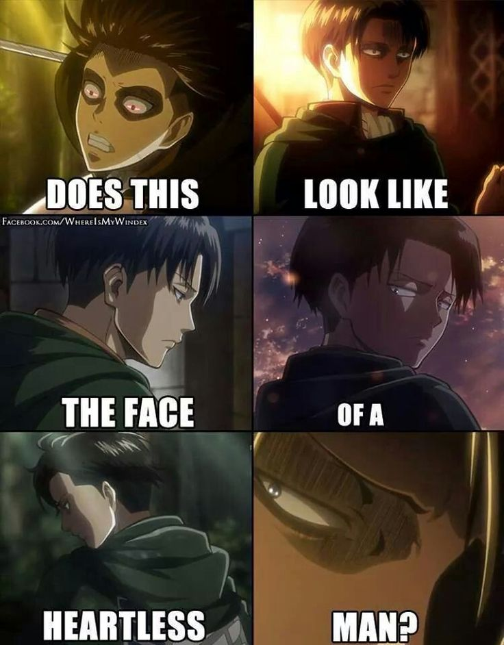 Levi is not heartless. Look at how much he has gone through