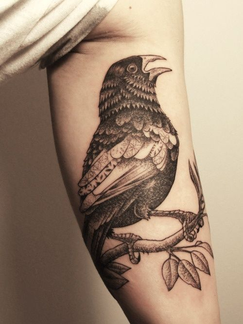 Black and Gray Crow Tattoo - Gregorio Marangoni http://inkchill.com/black-and-gray-crow-tattoo/