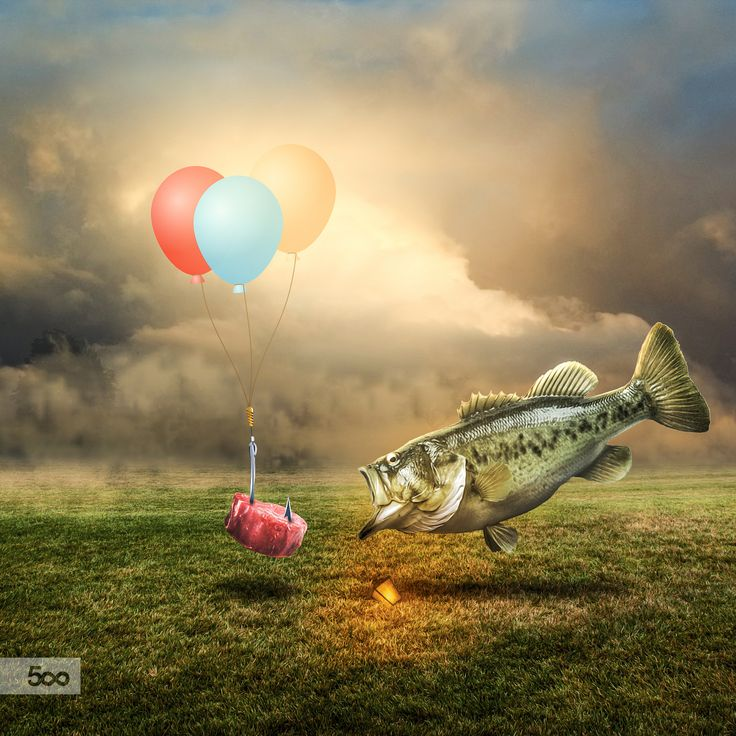 Bait by Lapanlima on 500px