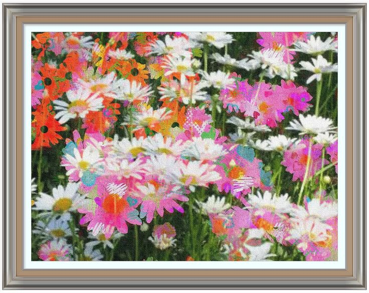 Stylized Daisies in multi-colours.