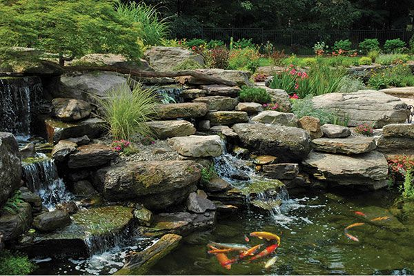 39 Best Images About New Japanese Waterfall Garden On