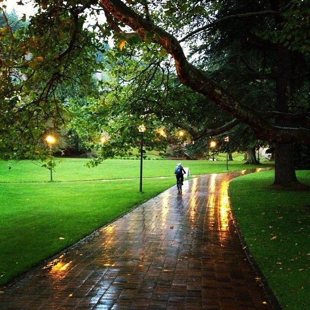 Western Washington University, Bellingham, WA