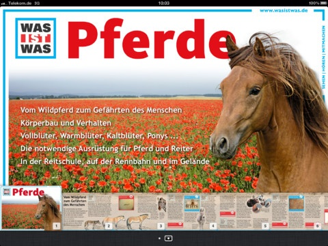 WAS IST WAS Pferde – spannendes Lesefutter für Pferdefreunde!