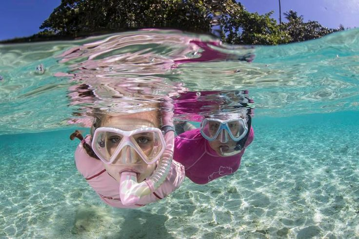 Enjoy snorkeling directly to the house reef at Murex Dive Resort in Bangka Island, Manado, North Sulawesi, Southeast Asia, Indonesia   #Snorkeling #DiveResort #BestDiveResort #Manado #Indonesia #BangkaIsland #MurexDiveResorts #DivingHoliday #Promotions #Activities #Underwater #Adventure #Outdoors #Kids #Travel #Sea #BlueSea #Explore