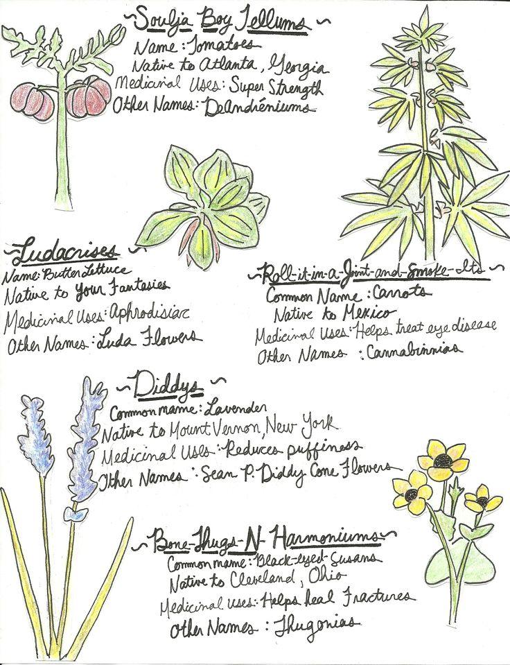Tom Haverford's Guide to Horticulture. #ParksandRec