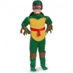 Toddler Raphael Teenage Mutant Ninja Turtles Fancy Dress Costume