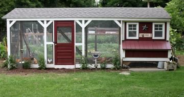 7 Favorite Chicken Coops | Living the Country Life