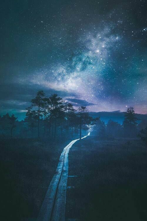 I follow paths lit by the stars. I follow roads you can only see in the night. They lead me to places in my dreams. They lead me home to where my heart lies. It is on these roads that I hear my song. Of who I am and where I belong. Paths lit by starlight, I walk. On the wings of dreams I ride.