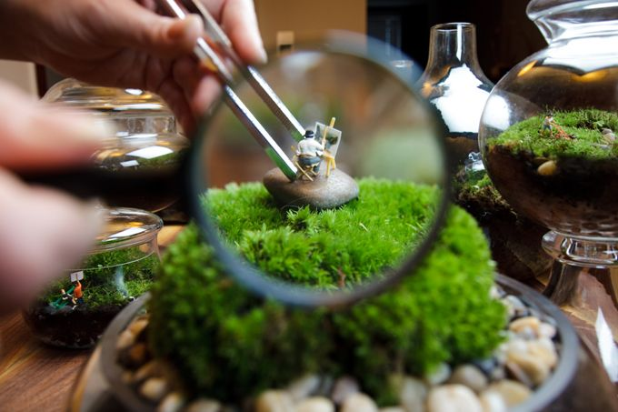 A precious, miniature world (complete with tiny people!) captured in beautifully-landscaped jars.