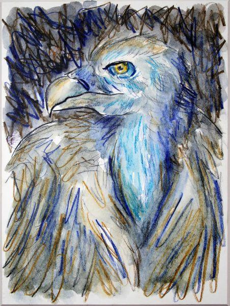 'Geier 1' von funkyzoo bei artflakes.com als Poster oder Kunstdruck $16.63