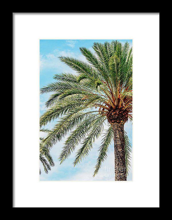 Green Island Palm Tree On Blue Sky Framed Print