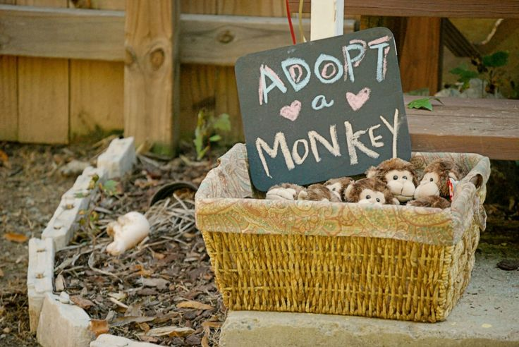 When you're curious like Curious George... (Harrison's 2nd birthday party!) - Okayba.com - Adopt a Monkey