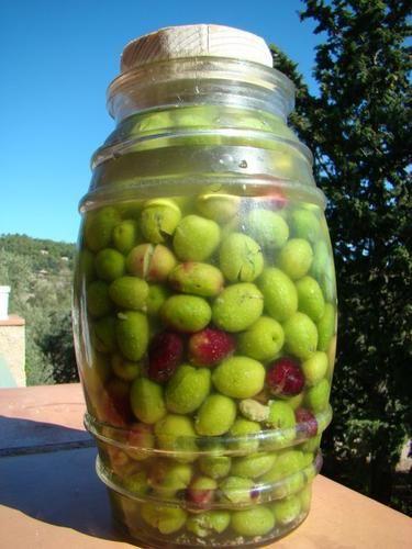 Olives cassées l'aneth sauvage (version classique) Oui je sais cet article vient en retard mais il vous servira de guide pour l'année prochaine ________________________________________ Je voulais vous faire une belle pompe à huile pour demain mais je...