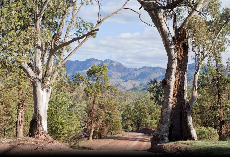 The Beautfull Flinders Ranges  Australia!!  find it at www.australianphotos.com.au