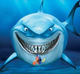 Ξέρετε οτι οι καρχαρίες αλλάζουν τα δόντια τους περίπου 40 φορές κατά την διάρκεια της ζωής τους; Έτσι δεν χρειάζεται να πάνε ποτέ στον οδοντίατρο :)