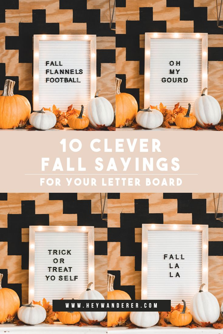 10 Clever Fall Sayings For Your Letter Board A Free Fall