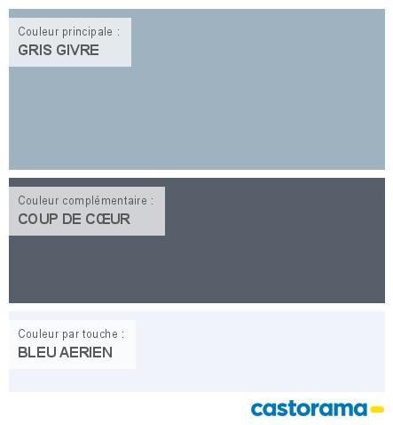 Castorama Nuancier Peinture - Mon harmonie Peinture  GRIS GIVRE mat de TOLLENS Esprit libre