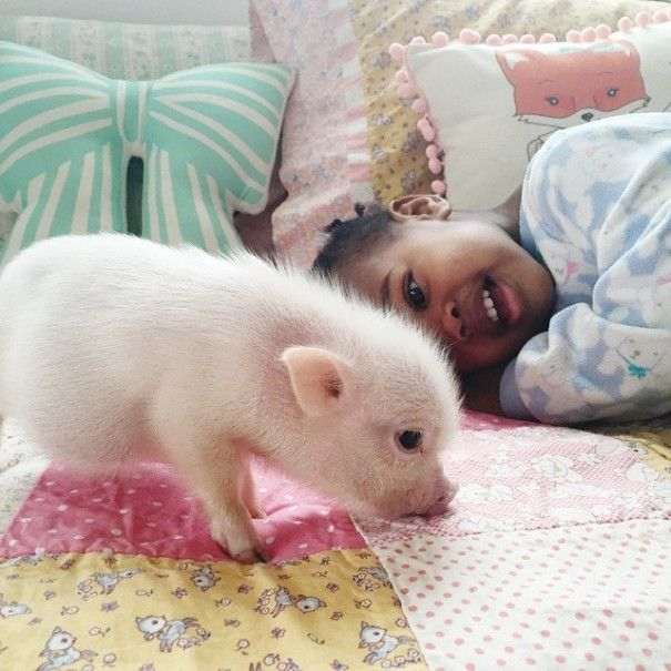 little-girl-piglet-friendship-libby-and-pearl-9-605x605