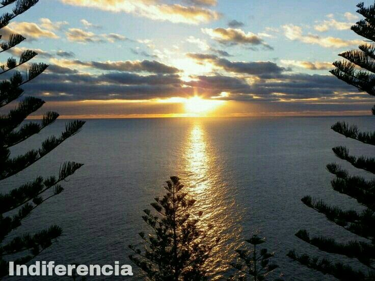 Norfolk Island  -  Norfolk #Wanderlust #Oceania #173