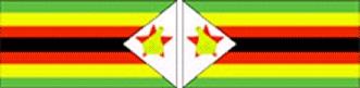 zimbabwe flag craft girl scout thinking day