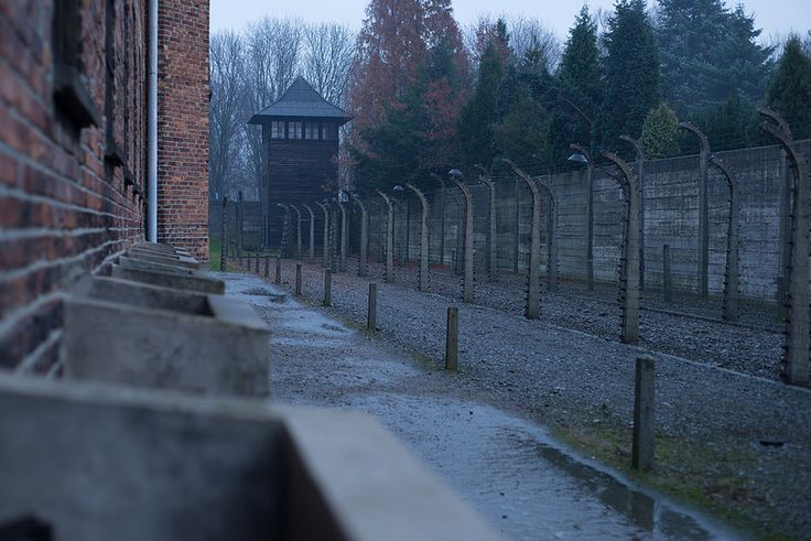 The line of fences behind Block 11 (camp prison - the covers of the cells in the basement visible on the left)