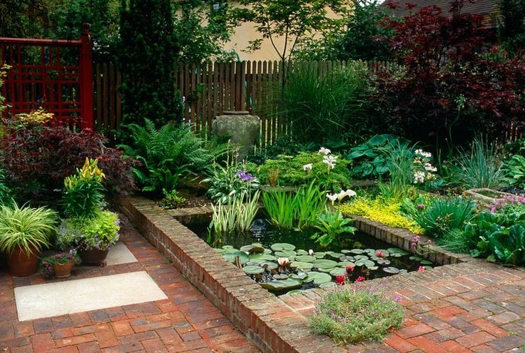 15 best gardenstory low maintenance gardens images on for Small pond care