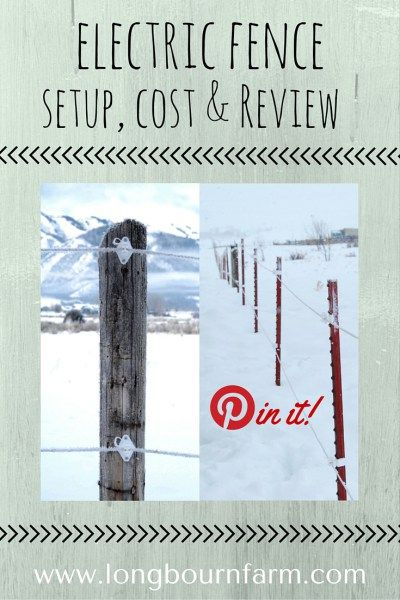 Electric fence setup, cost and review. See how we like our polywire electric fence after installing it 3 years ago!