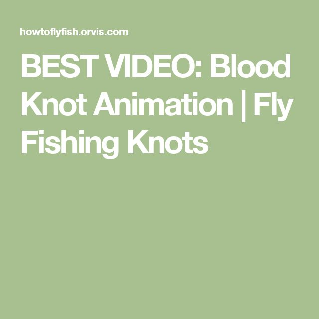 BEST VIDEO: Blood Knot Animation | Fly Fishing Knots