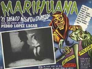 MARIHUANA el tabaco negro del diablo