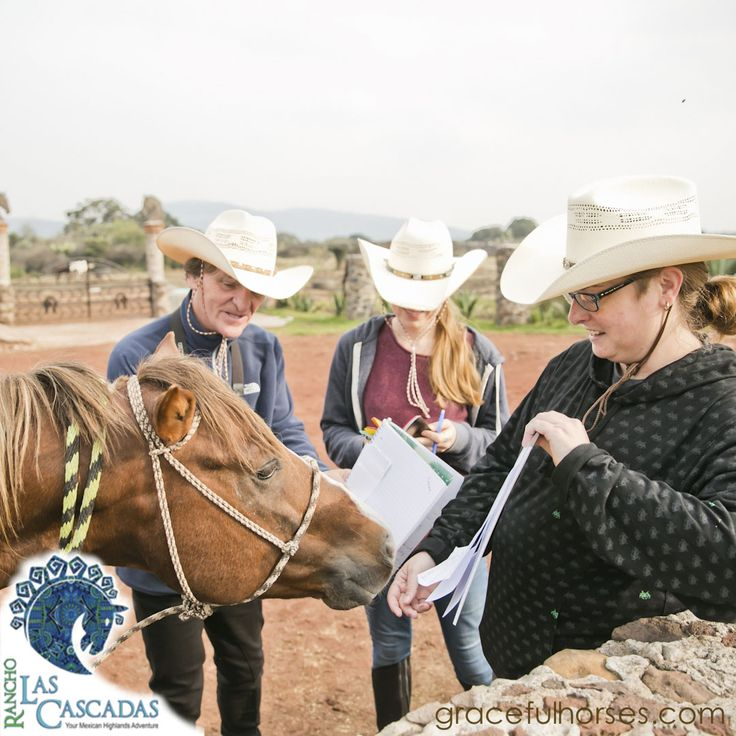 I'ts time to get fun!… At Rancho Las Cascadas you can ride horses in amazing landscapes, relax with the sessions of yoga and make good friends. Join us! http://rancholascascadas.com/contact/?utm_content=buffer11eda&utm_medium=social&utm_source=pinterest.com&utm_campaign=buffer