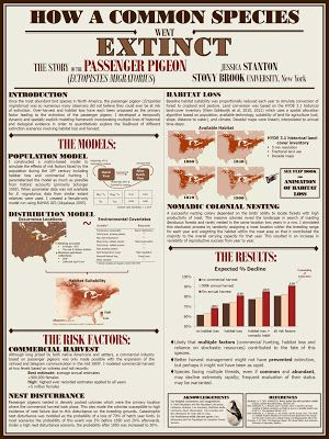 Best Research Posters Images On   Poster Designs