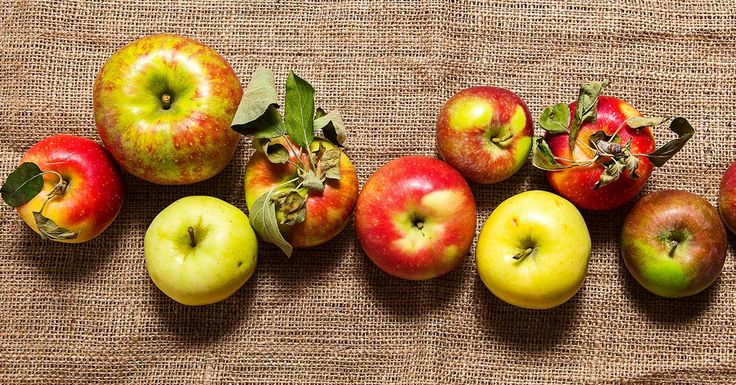 Use our guide to apples, whether you're looking for the perfect filling for your apple pie recipe or need to know where to beeline for a supermarket snack.