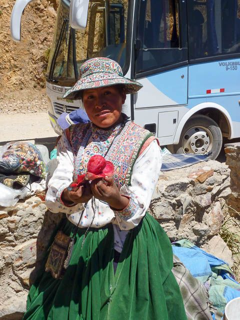 Selling prickly pear fruit - Colca Canyon, Peru * Read about it at TIFFIN - bite sized food adventures -