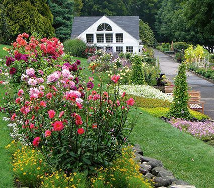 Visit White Flower Farm's garden center & nursery today. Talk to one of our helpful garden experts and find more info about plants, flowers & gardening.