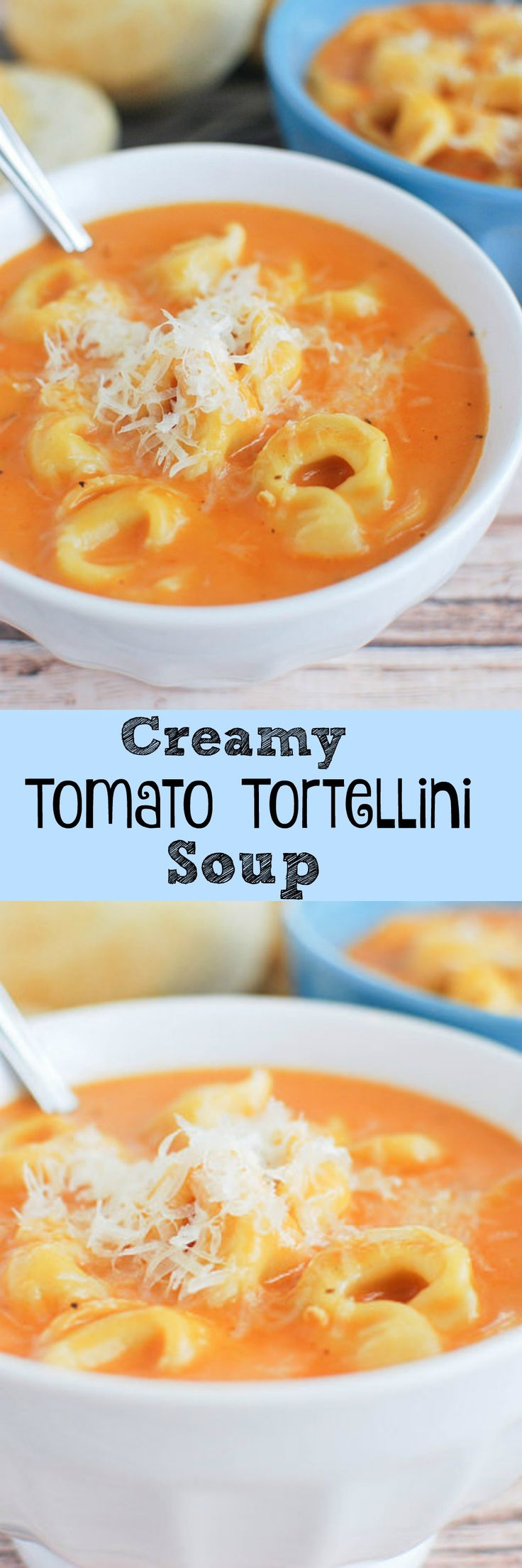 Creamy Tomato Tortellini Soup - yummy meatless meal that takes minutes to make!