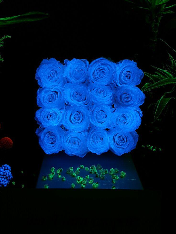 flAVATAR rosebox glow in the dark