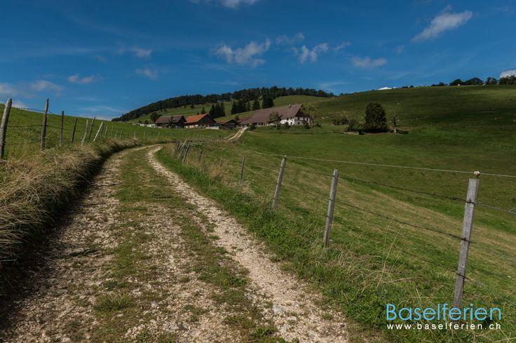 Wandervorschlag: #Wandern im Guldental: Parkplatz Zingelen ( #Passwang SO) – Hohe Winde und zurück. #Switzerland
