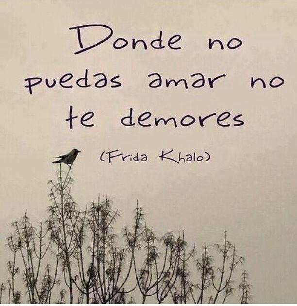 Especial Frida Kahlo #Frases