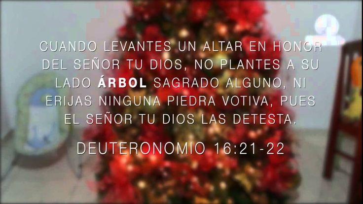 """Levítico 20:23 - Biblia de las Americas """"Además, no andéis en las costumbres de la nación que yo echaré de delante de vosotros; porque ellos hicieron todas estas cosas, yo los aborrecí."""