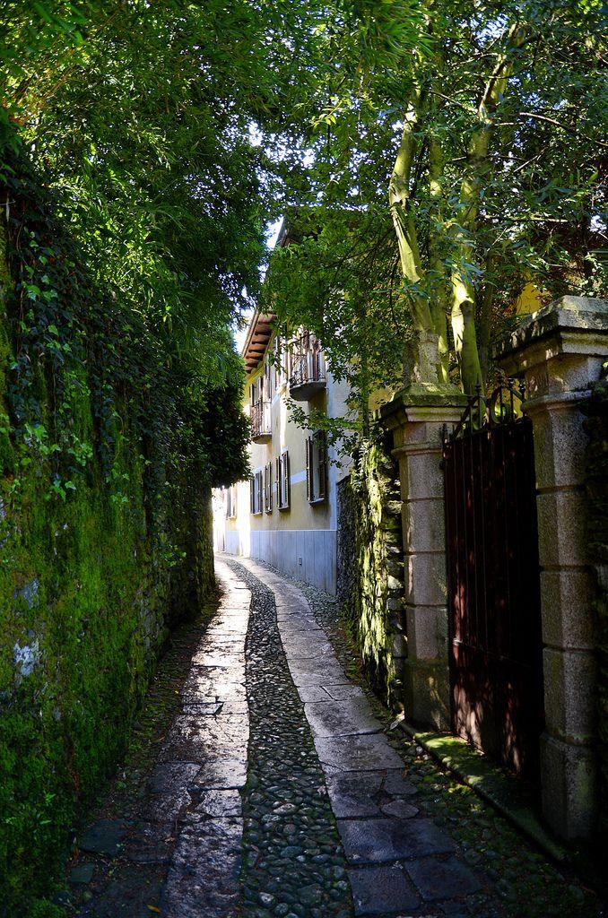 Torino, Italy, province of Turin , Piemonte