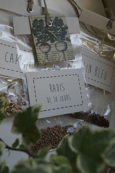 Petits sachets de graines