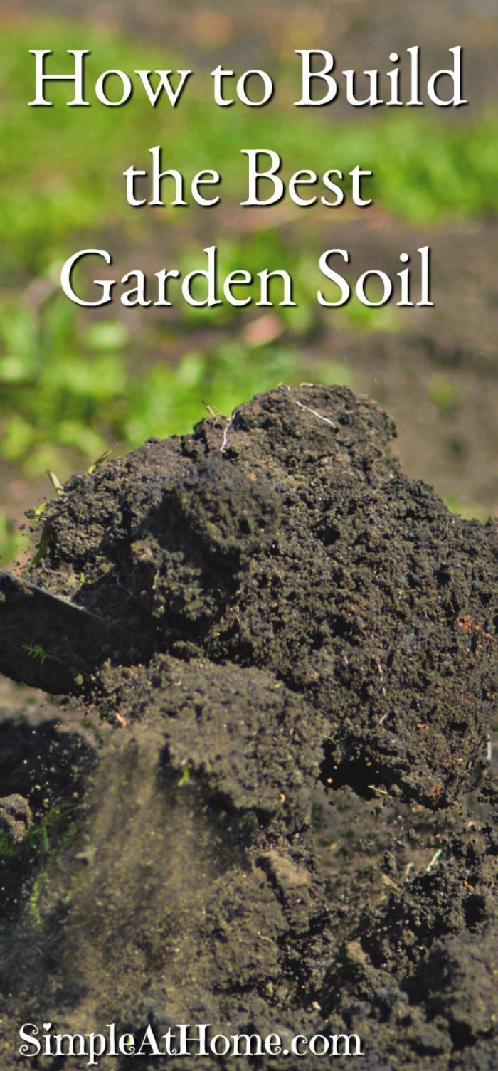 How To Build The Best Garden Soil Simple At Home Garden Soil Organic Gardening Tips Organic Vegetable Garden
