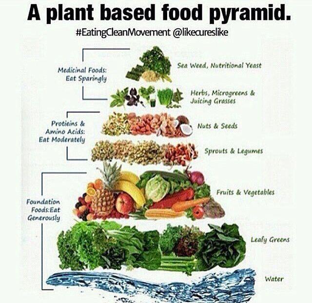 plant based food pyramid | Fitness | Pinterest | Vegan ...