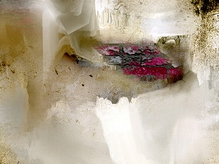 davina nicholas watercolor artist - Google Search